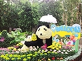 C K.S. Shilin Official Residence Chrysanthemum Show