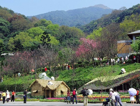 Yangmingshan Hot Springs_1