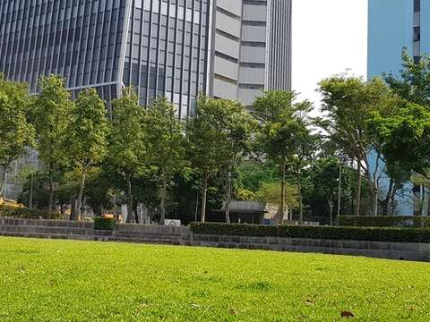 Outdoor Cinema to Take Place at Xinyi Square